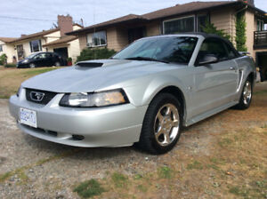 2003 Ford Mustang Convertible w Pony Pkg Coupe (2 door) $5700