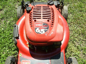 Lawnmower & Trimmer repairs