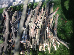 Free firewood, logs and kindling