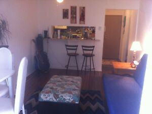 1 Bed Apt. For rent Elkford $650 Utilities, Wifi, BBQ Inc. May 1