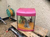 Aqua Start 320 bow fronted complete tropical aquarium fish tank set up