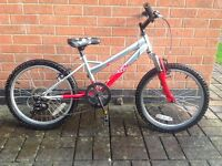 Boys Raleigh Bike- £15