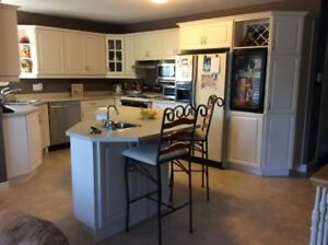 Kitchen Cabinets - Complete with sinks and counters