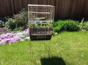 Cockatiel bird cage with stand and accessories