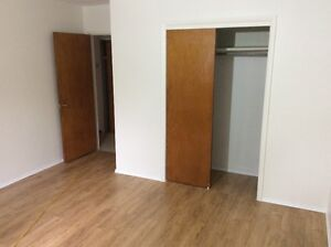 1-bedroom+Den apartment for rent Edmonton Edmonton Area image 5