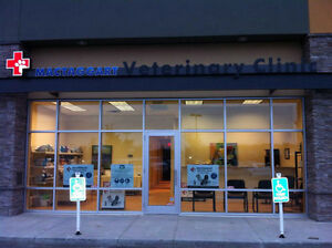 Veterinary Services - Vet Clinic in Edmonton Edmonton Edmonton Area image 1