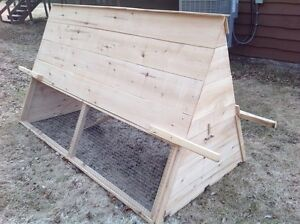 Chicken Coop and Chicken Rental