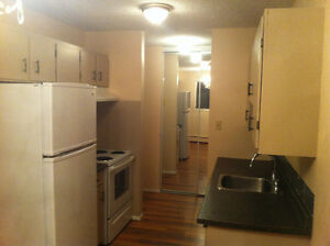 Gorgeous 2 bedroom available in Oliver Edmonton Edmonton Area image 5