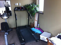 3 Hp Vitamaster Treadmill with Cushioned Deck and Power Incline
