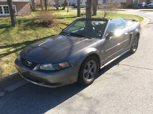Reduced-2004 Ford Mustang Convertiblee