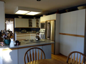 Kitchen cabinets and drawers