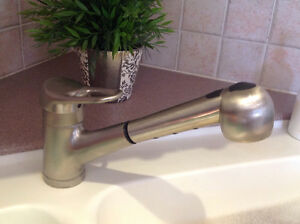 Blanco pull-out kitchen faucet