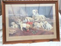 Dog with puppies picture