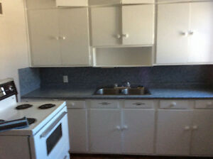 Spacious one bedroom apartment Harold st. Thunder Bay