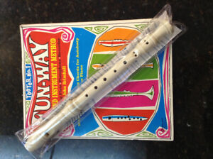 Flute, Clarinet, Saxes,brasses, etc....Band instruments lessons.