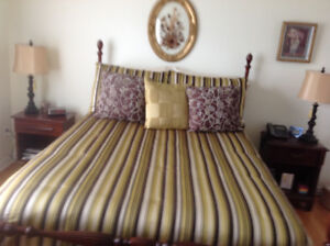 Queen Comforter with Matching Pillow Shams