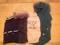 Chandails et manteaux pour chien