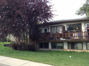 Basement unit of 4-plex in Southland - close to LRT