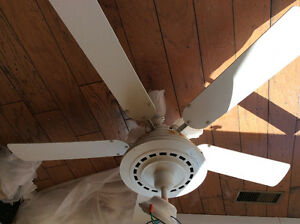 Large white ceiling fans , with lights