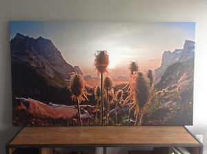 Canvas mounted alpine photo by Lucas Jmieff