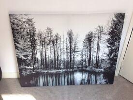 Black & White Tree Landscape Canvas Print art 90x120cm
