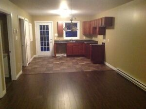 CONDOS FOR RENT ONLY $ 750.00 / MONTH !! St. John's Newfoundland image 3