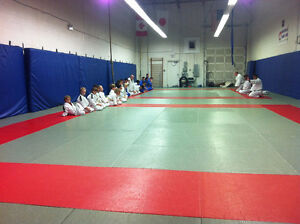 Martial Arts Centre looking for a Third Partner