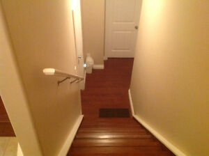 !!! Brand new 2bedroom basement suite available