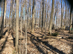 Lot For Sale - 2 Acres in Midland Ontario