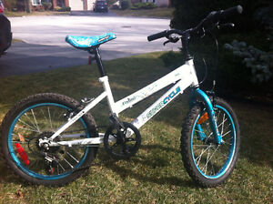 Super cycle 'FLY GIRL' bike