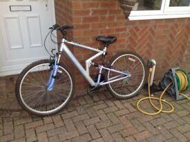 Cheap mountain bike,