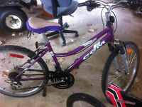 THREE BIKES, DIFFERENT SIZES FOR SALE