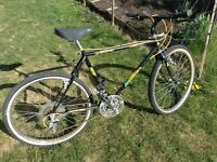 "Mens 18 speed Mountain Bike 19"" frame"