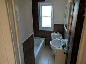 Fully renovated Two bedroom available Dec 1st Windsor Region Ontario image 7