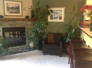 Looking for Mature Room mate to share CreekSide Condo