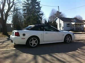 2000 Ford Mustang GT / Cobra Convertible