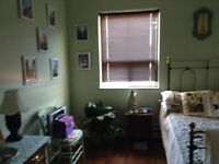 Stoney Creek Two Room Bachelor