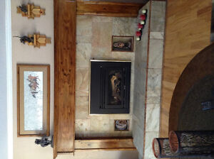 Natural gas or propane fireplace insert