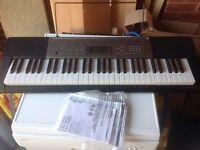 Casio LK-240 keyboard