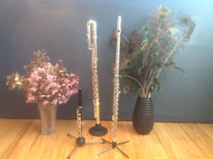 FLUTE SPECIALIST – available for Day Camps