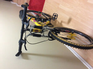 Dirt/mountain racing bike