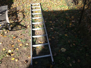 Ladder about 10 footer , only 35  dollars Kitchener / Waterloo Kitchener Area image 1