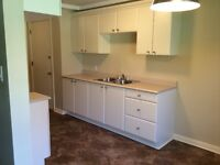 COMPLETELY RENOVATED LARGE TWO BEDROOM APARTMENT