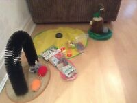 Various cat toys, job lot.