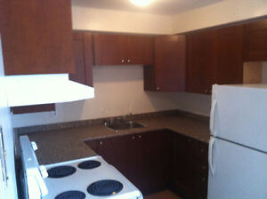 2 Bedroom Apartment Downtown Midland For Rent!