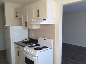 DECEMBER FREE INCENTIVES 1 BD NEWLY RENOVATED BALCONY ELEVATOR