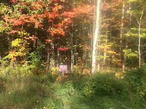 Beautiful Lot for Sale in Nipissing Township