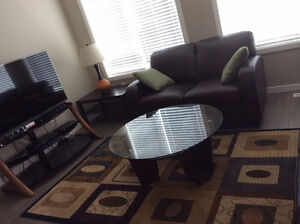 FULLY FURNISHED 2BR/2 BATH IN HARBOUR LANDING Regina Regina Area image 5