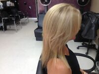 COLOR CUT AND STYLE $88with Gail at Cortex Hair Salon