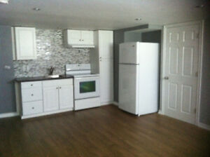 Attractive East End lower level apartment